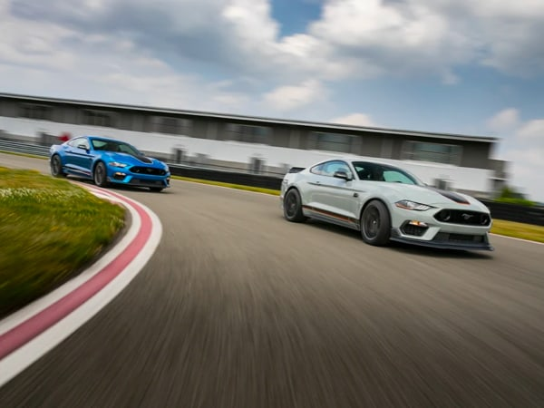 Ford Mustangs racing on a track