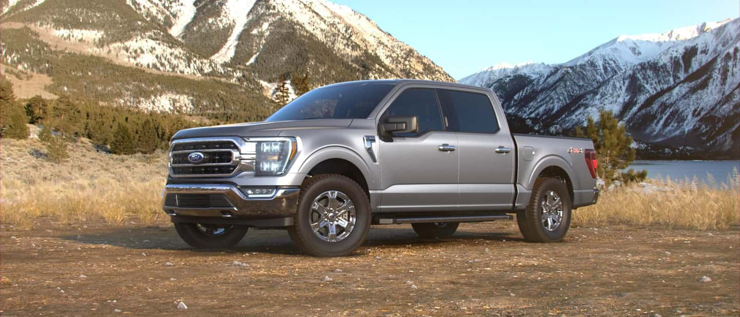 Iconic Silver Ford F-150