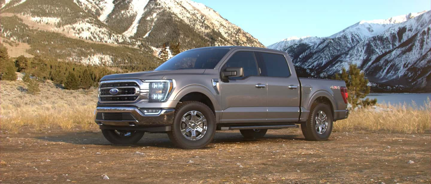 Stone Gray Ford F-150