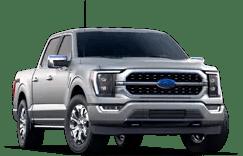 Ford F-150 Platinum Trim